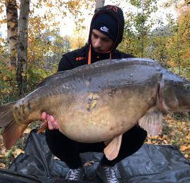 "Luke Bachmann<img src=""https://carp-royal.de/wp-content/uploads/2019/03/iconfinder_Germany_298451.png"" class=""country"" />"